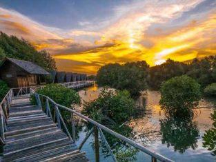 Rekomendasi Wisata Alam Jakarta Surga yang Menyimpan Sejuta Pesona